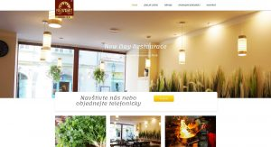 tvorba-webovy-stranek-venota-portfolio